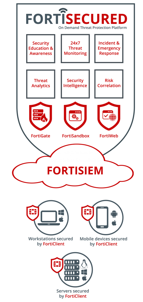 FortiSecured on demand threat protection platform